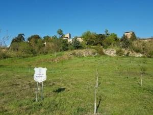 Domizil Borgon Monticelli