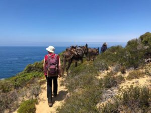Eselwanderung Algarve für Frauen