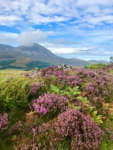 Scottish Highlands Walk